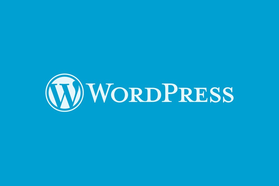 Everything You Always Wanted to Know About WordPress (But Were Afraid to Ask)